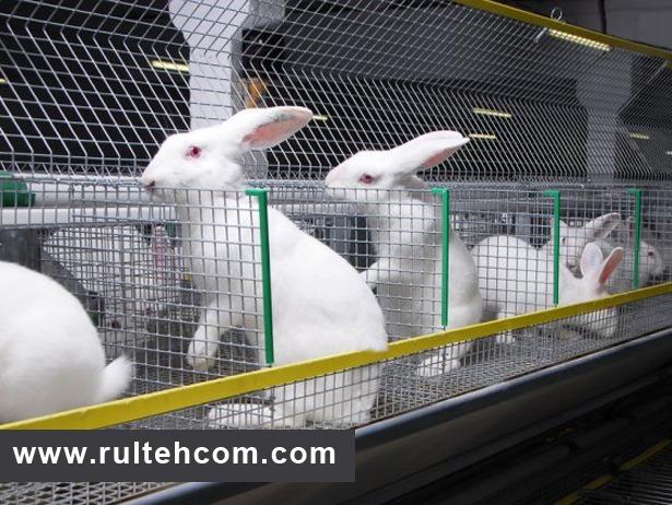 Клетка из оцинкованной сетки кроликам своими руками