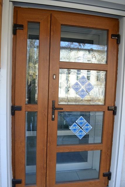 образцы дверей входных стеклопакет