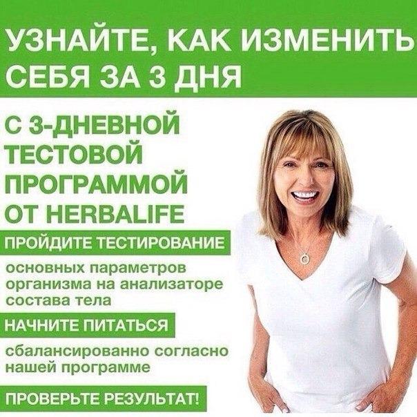 гербалайф диета для похудения