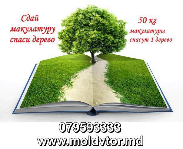 литература макулатура сканворд 5