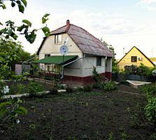 Дача недалеко от Днестра, 20 км от Кишинева, Кошерница