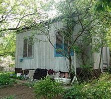 Дачный участок в СОТ Заря Трушень (7 соток) - 5 555 €