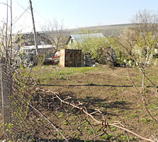 Земельный участок в садоводческом кооперативе