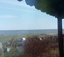 Продам дом-дачу возле Одессы. Дешевле грибов!