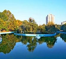 Куплю 1- но или 2-комнатную квартиру Приморский район.