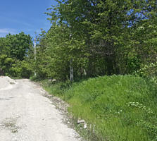 Продам Земельный участок возле леса под застройку 15 соток
