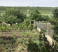 Vînd vila ÎP Vierul Schinoasa Chisinau