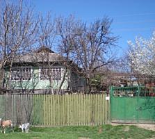 Страшены, дом, кухня, погреб, гараж, сад с виноградником.