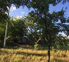 Живописный участок с небольшим домиком