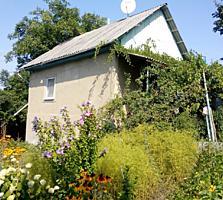 Прекрасная дача 8 соток в собственности и котельцовый дом