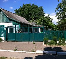 Срочно продается дом в с. Протягайловка