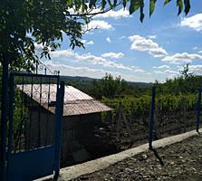 Teren de pămînt (6 arii), privatizat, amplasat 6-7 km de la Chișinău