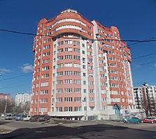 Старая Почта. ул. Соколень. Новострой. 3/12. Середина.