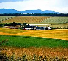 Teren constructii Ialoveni