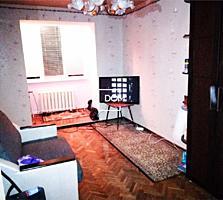 1-x комнатная квартира на Dimo