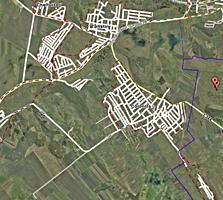 60 hectare comasate 100% in Colonita cu livada de mere - 8 km Chișinău