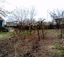 Продаётся дом в селе Малаешты