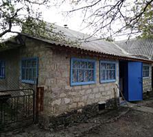 Дом в селе Васильевка
