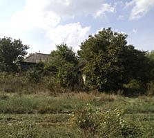 Casa + 30 ari 11900 euro Valea Colonitei 11 900 €