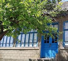 Село Лебеденко. Продаются два дома в одном дворе