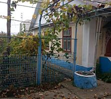Два добротных дома в одном дворе.