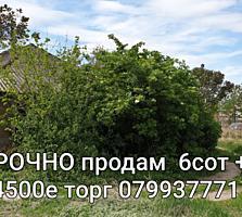 Срочно продается участок-дом 10.500е Бельцы. Торг.