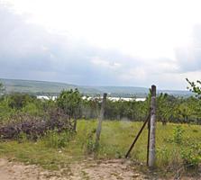 Дачный участок, Данчены с прекрасным видом на озеро