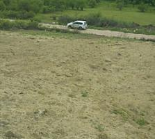6 соток, дачный в кооперативе через Думбраву, 200 м от асфальта