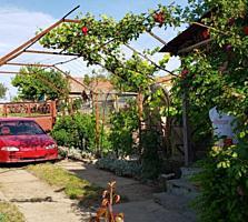 Продам загородный дом с участком в с. Тея
