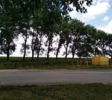 Продается 5,5 га земли пригород города Единец у проезжей части.