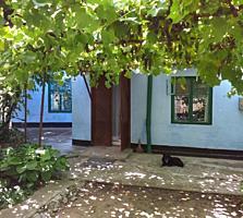 Дом в центре Новых Анен 8.5 соток.