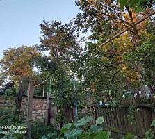 Продам дом в селе Чобручи