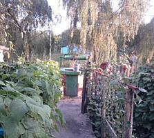 Se vinde gospodărie sătească în centru satului Obreja Veche, r. Fălești