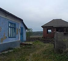 Два дома в одном дворе