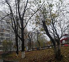 Super apartament, P. Zadnipru, 2 camere, 2 balcoane, reparatie buna!