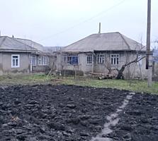 Продаю дом и участок в Сынжерей. Vând casa in Singerei. Lot str. centr.