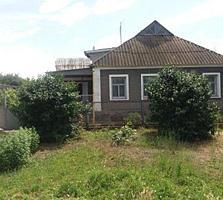 Продаю добротный дом в селе Терноватое возле пгт. Ольшанское
