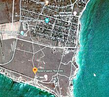 Продаются 2-а участка приватизированной земли в с. Рыбаковка