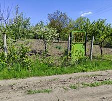 Продам Дачу - Участок 6 соток поселок Максимовка в хорошем месте.