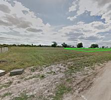 Ровный участок 11 соток Николаев Варваровка Хвойная вид на реку земля