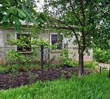Продам дом Новые Бельцы или обмен на кв. без ремонта