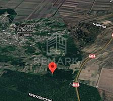Se vinde teren, 61 ari în pădure, Drăsliceni, rn. Criuleni! Terenul ..