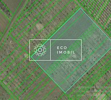 Se vinde teren agricol în comuna Trușeni în vecinatate cu Dumbrava. ..