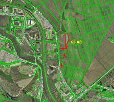 Spre vanzare teren agricol cu amplasare pe strada Calea ...
