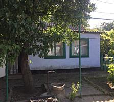 Продаю дом с большим земельным участком