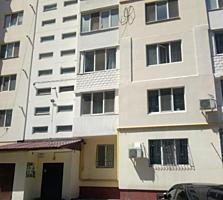 Квартира в новом доме в Центре на Пишоновской в Приморском районе!