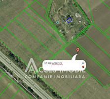 Investește inteligent! Spre vânzare teren agricol situat în Bacioi, .