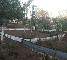 Срочно продается ухоженный земельный участок в Мерений Ной, недорого