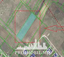 Spre vînzare se oferă teren pentru construcții, situat înCriuleni, ...