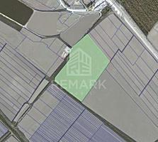 Se vinde teren 6,4 ha Peresecina lângă carieră! - terenul este ...